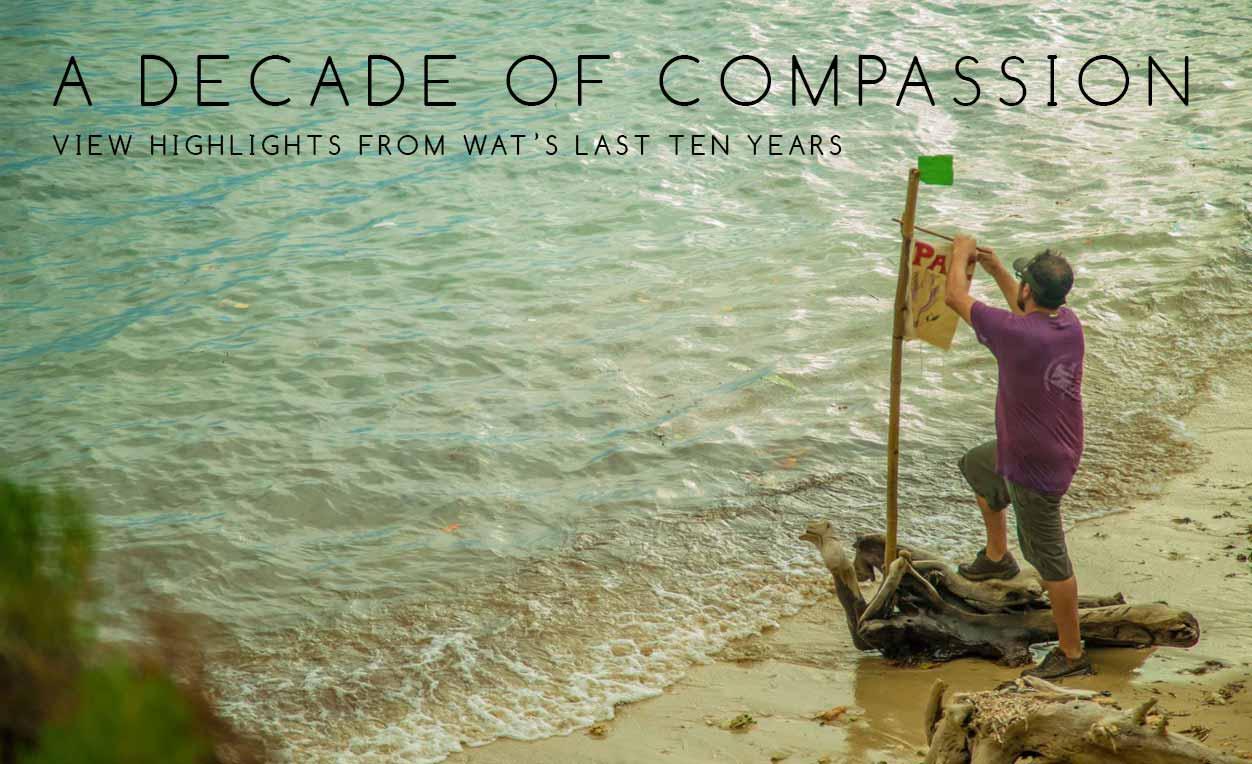 A Decade of Compassion